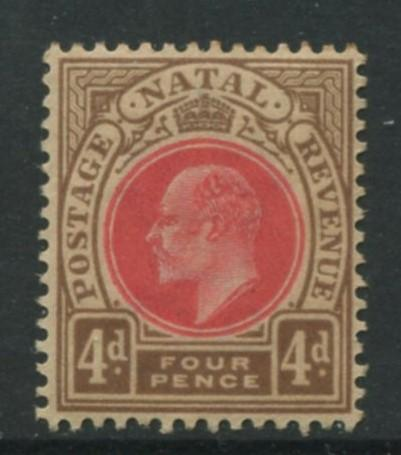 Natal -Scott 87 - KEVII Definitive -1902 - MNG - Single 4p  Stamp