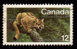 Canada - #732 Eastern Cougar  - Used
