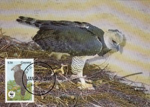 Guyana 1990 Maxicard Sc #2246 $30 Harpy eagle WWF