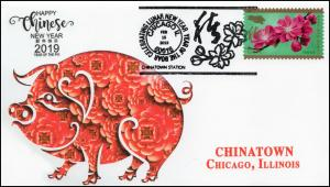 19-085, 2019, Year of the Boar, Pictorial Postmark, Event Cover, Chinatown