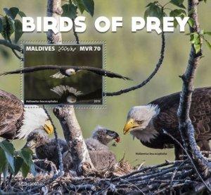 MALDIVES - 2019 - Birds of Prey - Perf Souv Sheet - MNH