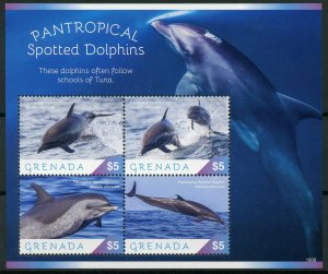 Grenada 2019 MNH Pantropical Spotted Dolphins 4v M/S Marine Animals Stamps