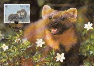 Ireland 1992 Maxicard Sc #868 28p Pine martens WWF