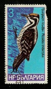 1978 Bird Bulgaria 3ct (TS-663)