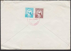 GB LUNDY 1975 cover - Puffin stamps - DELAYED BY STORM......................F836