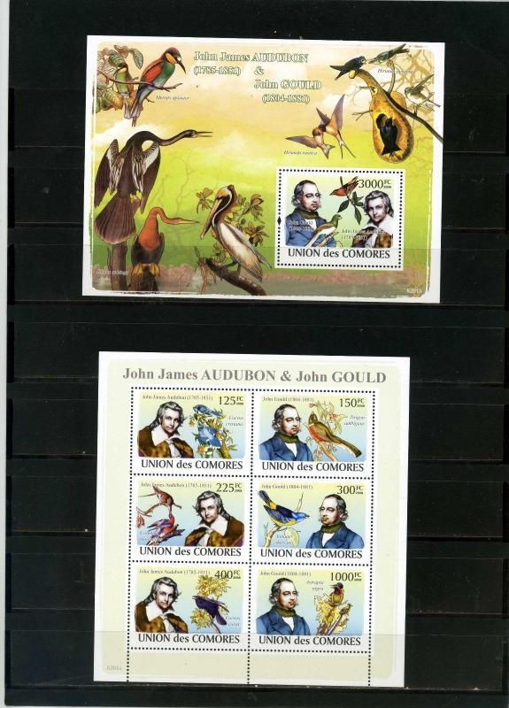 COMORO ISLANDS 2008 BIRDS SHEET OF 6 STAMPS & S/S MNH