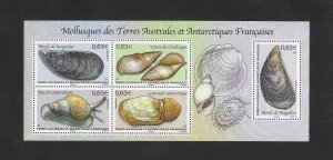 MOLLUSKS - FRENCH SOUTHERN ANTARCTIC TERRITORIES #502   MNH