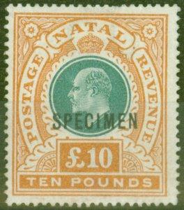 Natal 1902 £10 Green & Orange Specimen SG145s Fine & Fresh Mtd Mint