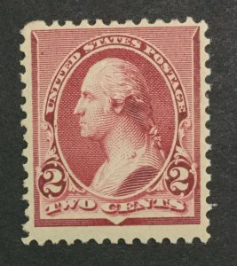 MOMEN: US #220 MINT OG **NH** POST OFFICE FRESH #31119