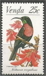 VENDA, 1981, MNH 25c  Sunbirds, Scarlet-chested sunbird, Scott 43