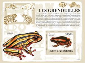 COMORES 2009 SHEET FROGS LES GRENOUILLES RANAS RAS AMPHIBIANS WILDLIFE cm9111b