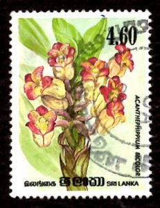 Sri Lanka 1984 Orchid Flowers, Acanthephippium bicolor 4.60r Sc.723 Used (#1)