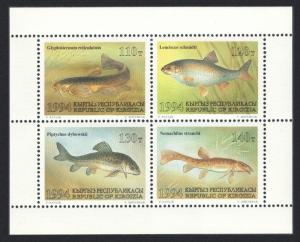 Kyrgyzstan Fish 4v sheetlet 1994 MNH SG#43-46 MI#44-47