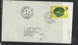 DOMINICA COVER (P1902B) 1976 QEII 20C  LOUBIERE    TO ENGLAND