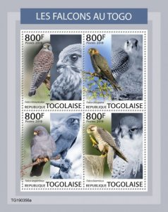 TOGO - 2019 - Falcons in Togo - Perf 4v Sheet - MNH