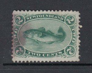 Newfoundland #24 2c Green COD (Used) cv$35.00