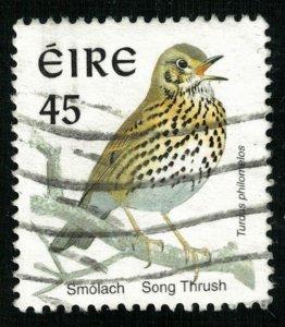 Bird 45 (T-5220)
