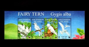 ASCENSION - 1999 - QE II - WWF - BIRDS - FAIRY TERN - CHICK ++  MNH MARGIN SET!