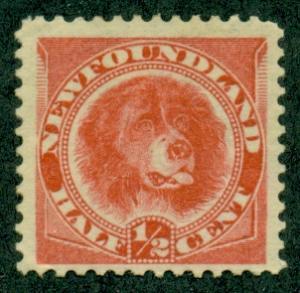 Newfoundland #57 Mint F-VF NH  Scott $125.00