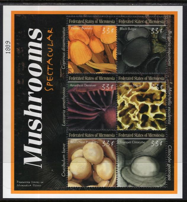 Micronesia 381 Mushrooms Souvenir Sheet MNH VF