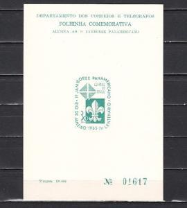 Brazil, Scott cat. 1006. Pan-American Jamboree, Stamp printed on Souvenir Card.
