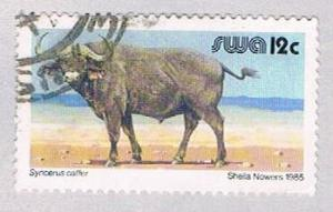 South West Africa 456B Used Cape Buffalo 1980 (BP26213)