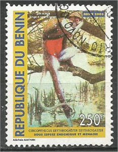 BENIN 2003, used 250fr, Erythrogaster Scott 1310