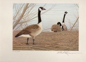 WYOMING #1 1985 STATE DUCK STAMP PRINT CANADA GOOSE by Robert Kusserow NO STAMP