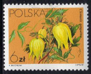 Poland 1984  used  clematis  6z.    #