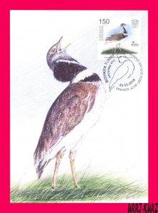 KYRGYZSTAN 2019 Nature Fauna Bird of Year Little Bustard Maxicard Maximum Card