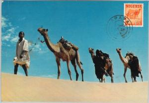 59104  -  NIGERIA  - POSTAL HISTORY: MAXIMUM CARD 1967  -  ANIMALS Camels