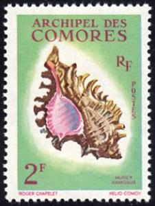Comoro Islands # 50 mnh ~ 2fr Sea Shell