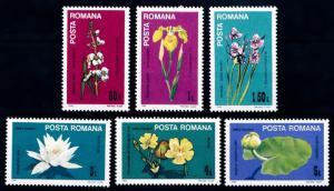 [67591] Romania 1984 Flora Flowers Blumen  MNH