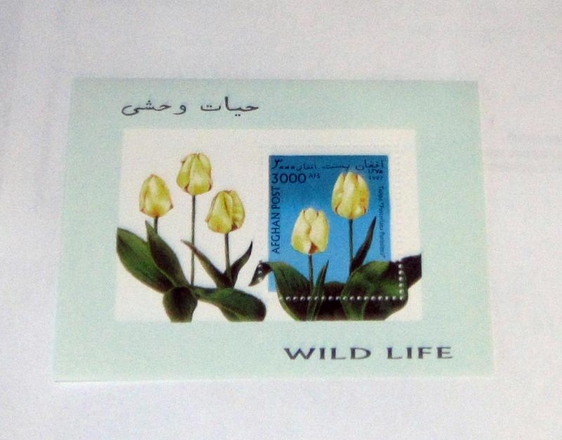 Afghanistan - MNH S/S. Tulips. Unlisted CV - See Note Below