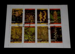 STATE OF OMAN, FLOWERS, AIRMAIL SHEET, CTO, NICE!! LQQK!!