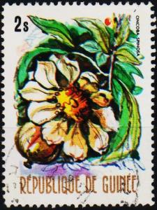 Guinea. 1974 2s. S.G.848 Fine Used