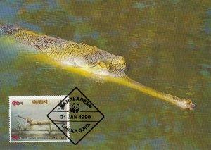 Bangladesh 1990 Maxicard Sc #340 50p Gravial crocodile WWF