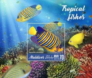 MALDIVES - 2019 - Tropical Fishes - Perf Souv Sheet - MNH