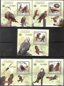 {095} Comoros 2009 Birds Eagles 5 S/S Deluxe MNH**