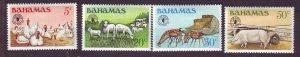 J24192 JLstamps 1981 bahamas set mh #500-3 animals