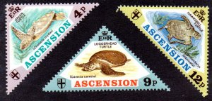 ASCENSION 170-2 MH SCV $10.25 BIN $5.15 TURTLES