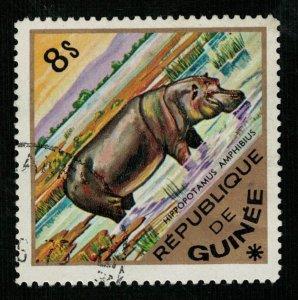 Animals, Republica Guinea (TS-1714)