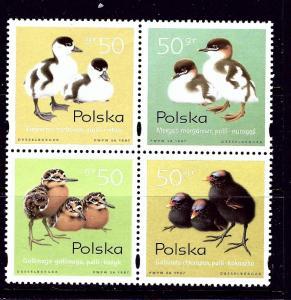 Poland 3377 MNH 1998 Baby Birds block of 4
