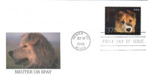 #3671 Neuter - Spay - Puppy Fleetwood FDC