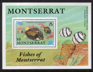 Montserrat 762 Fish Souvenir Sheet MNH VF