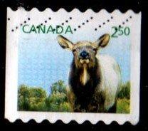 Canada - #2714 Newborn Wapiti Coil - Used