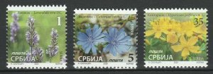 Serbia 2020 Flowers 3 MNH stamps