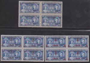 Newfoundland - #249-251 1939 Royal Visit set of 3 in blocks VF-NH