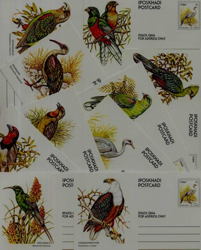 Ciskei 10 unused pre-stamped cards Birds