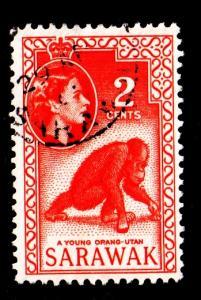 Sarawak - #198 Young Orangutan -  Used